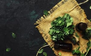 oregano oil for health