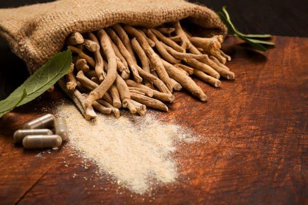 adaptogens and adrenal fatigue - ashwagandha root