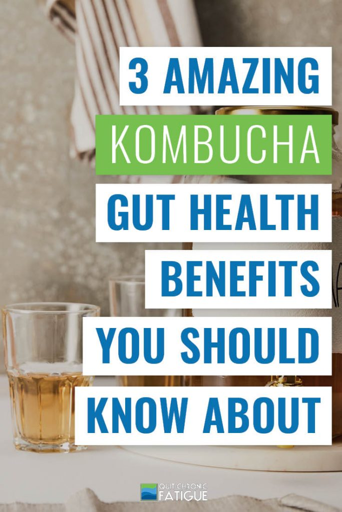 3 Amazing Kombucha Gut Health Benefits You Should Know About | Quit Chronic Fatigue