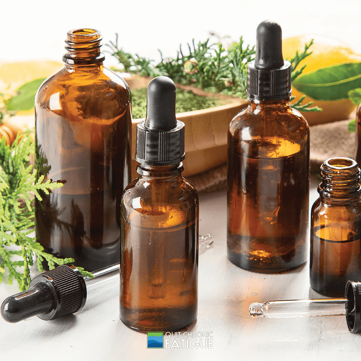 Best-Essential-Oils-for-Gut-Health-You-Need-to-Know-About